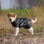 Hunde-Netzmantel Hugo