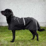 Hunde-Regenmantel gefüttert