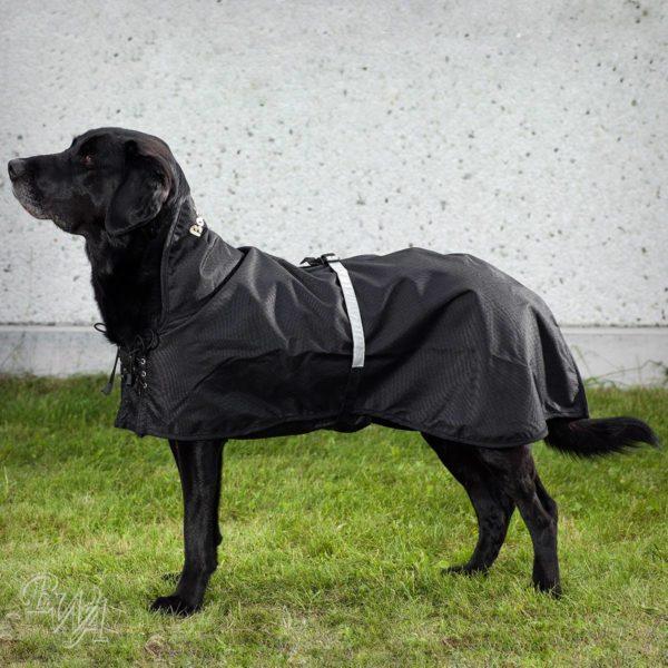 Gefüttert Hunde Hunde Gefüttert Regenmantel Hunde Regenmantel kOXwPZ0nN8