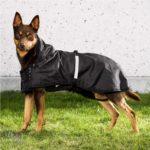 Hunde-Regenmantel