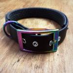 Halsband mit Doppelstegschnalle Rainbow