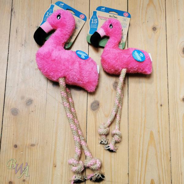 Beco Fernando der Flamingo