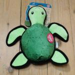Tommy die Schildkröte